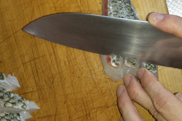 チヌ(クロダイ)料理松皮造り
