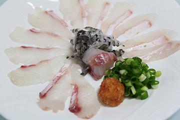 チヌ(クロダイ)料理薄造り