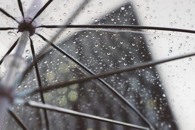 梅雨の雨画像
