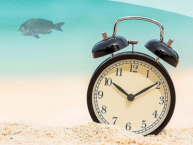 タイラバの釣れる時間帯
