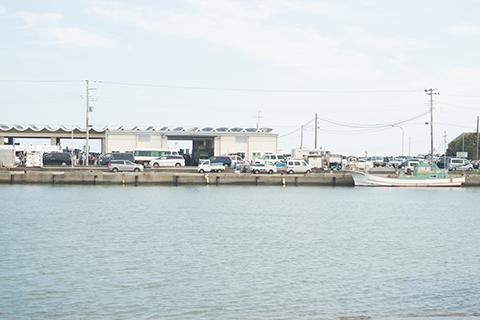 イワシパターンのポイント漁港