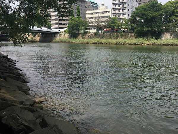 チニングポイント河川