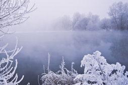 冬のチニングのルアー、釣り方