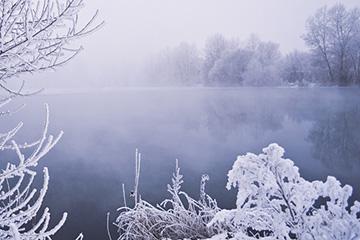 冬チニングルアーと釣り方