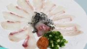 チヌ (黒鯛)の薄造り