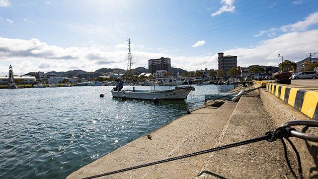 春アジングポイント漁港画像