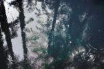 シーバスを狙う雨天時の画像
