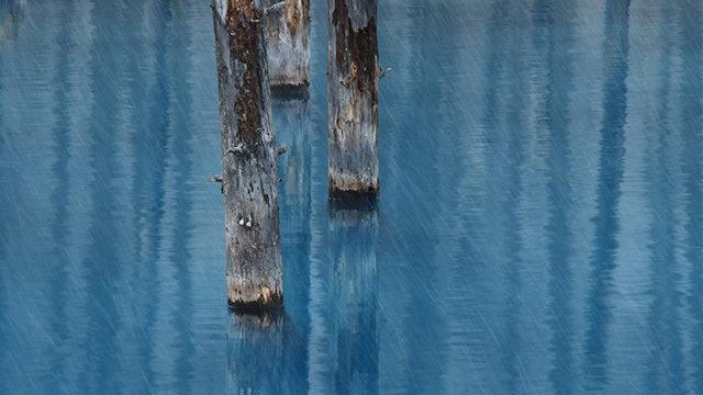 冬の雨天時の河川画像