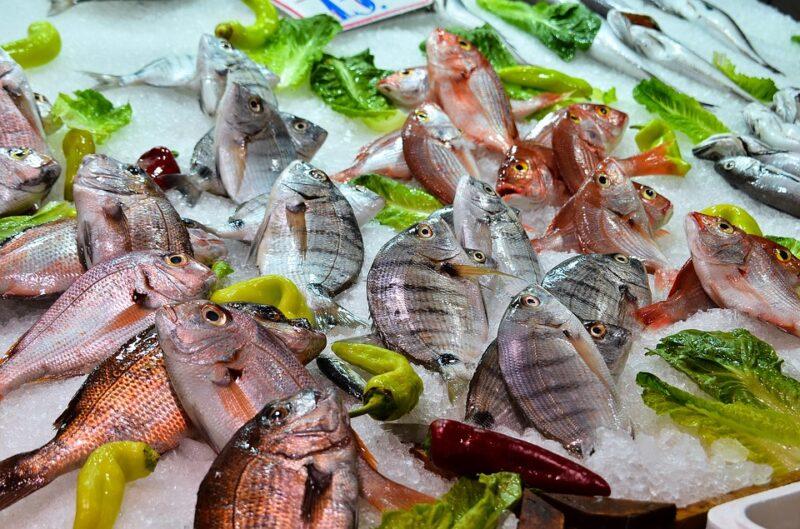 鮮度が良い魚市場画像