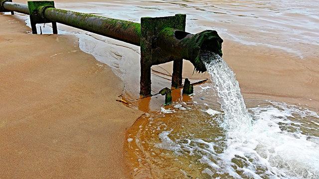 シーバスデイゲームポイント排水回り画像