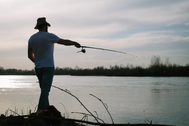 シーバス釣り画像