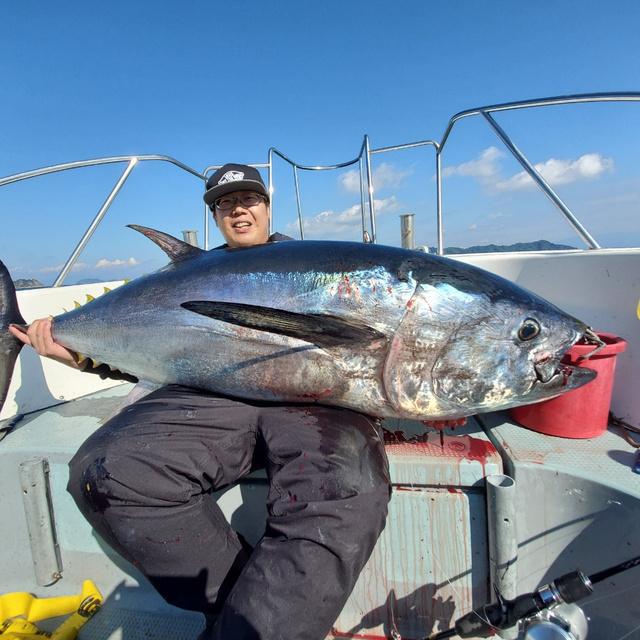 瀬戸内海でクロマグロ釣り画像