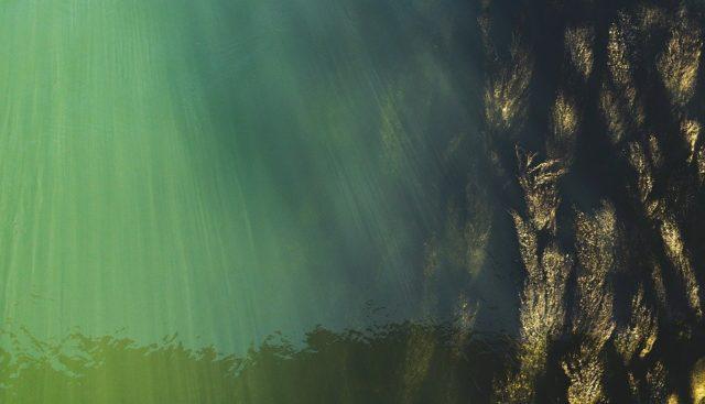 ライトジギング若潮イメージ画像