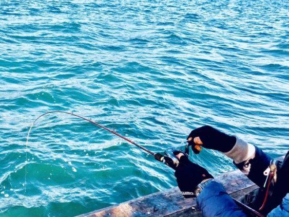 冬アジング釣り方画像