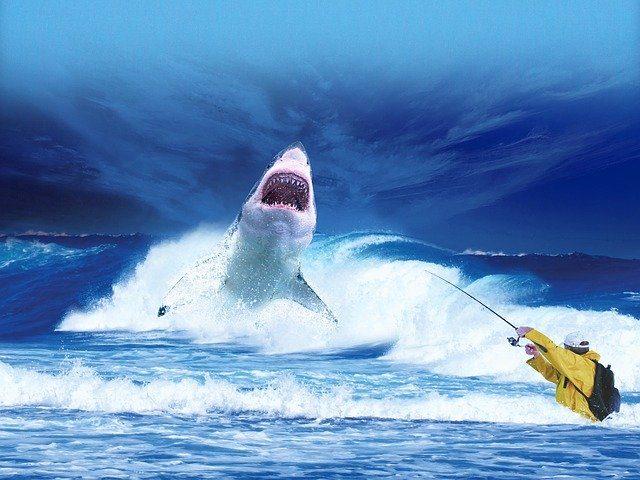 ルアーで釣れないノウハウイメージ