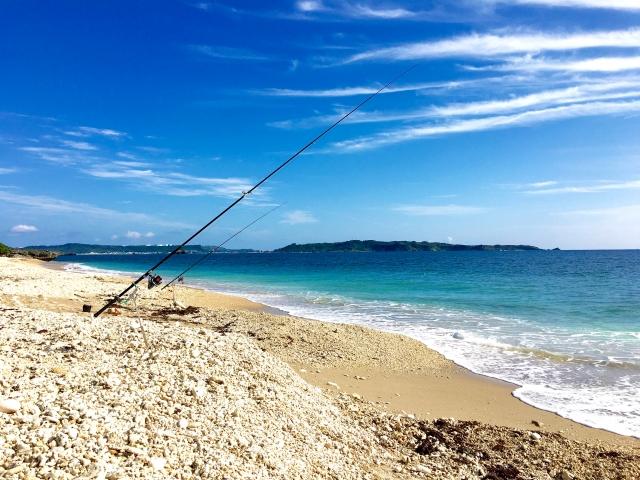 夏の時期のヒラメ釣り