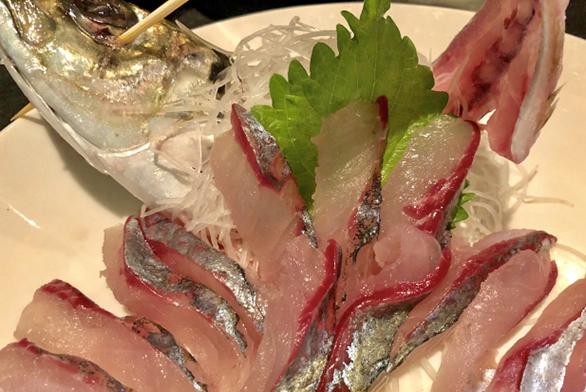 アジ刺身|刺身で食べて美味しい釣り魚