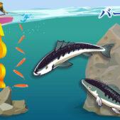 ライトジギングの釣り方の基本!もっと釣るためのジギングの基本とアクション