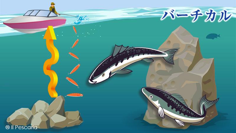 バーチカル|ジギングの釣り方基本