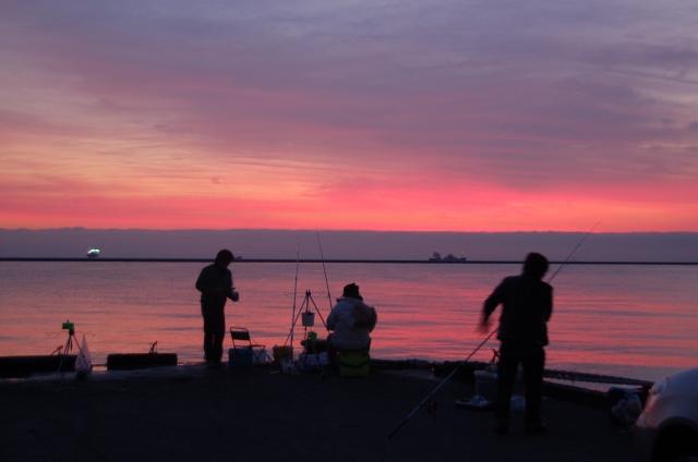 アジング夜の釣り方