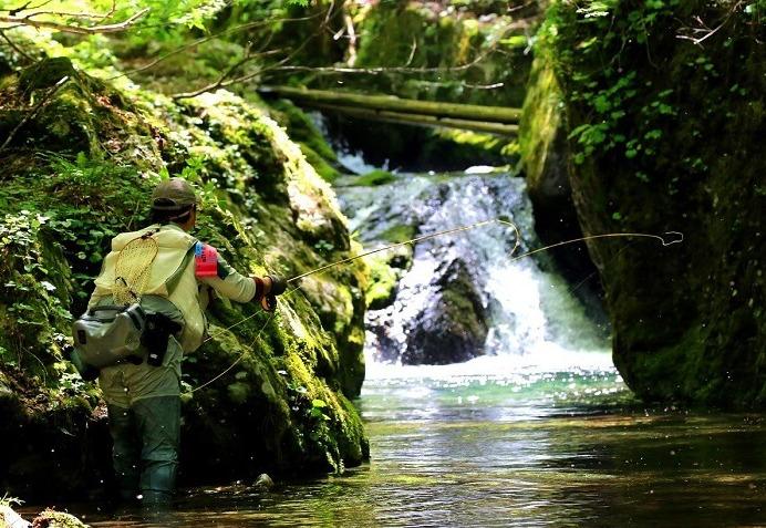 アマゴ渓流釣り