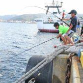 シイラ釣りが最盛期に入り釣り人がこぞってファイトを繰り広げる奄美大島名瀬港