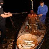 全国各地で落ちアユ解禁!釣果やさまざまな伝統的なご当地漁法の数々