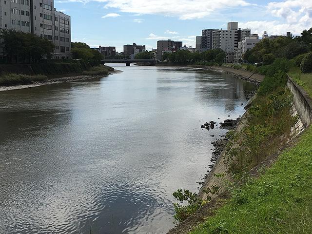 カーブの外側|シーバスポイント河川